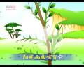 《小松树》